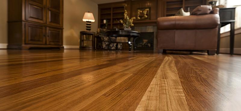 beautiful hardwood floors in living room