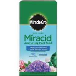 Miracle-Gro Water Soluble Miracid Acid-Loving Dry Plant Food