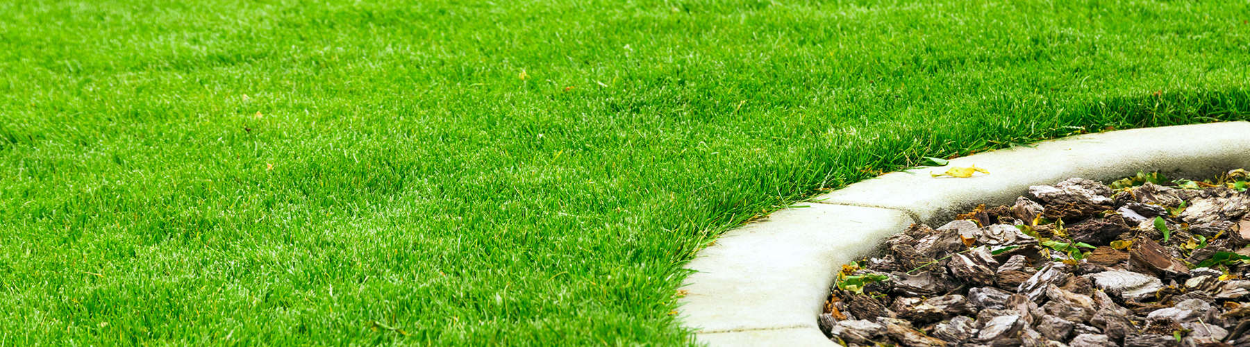 lawn care and maintenance projects