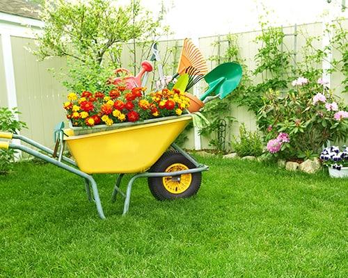 rakes, shovels, fertilizer, wheelbarrow