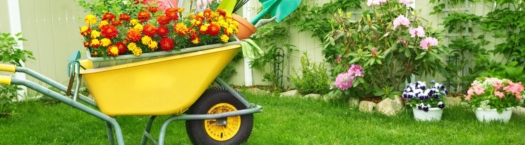 6 Steps To A Healthier Yard This Spring Norfolk Hardware Home Center