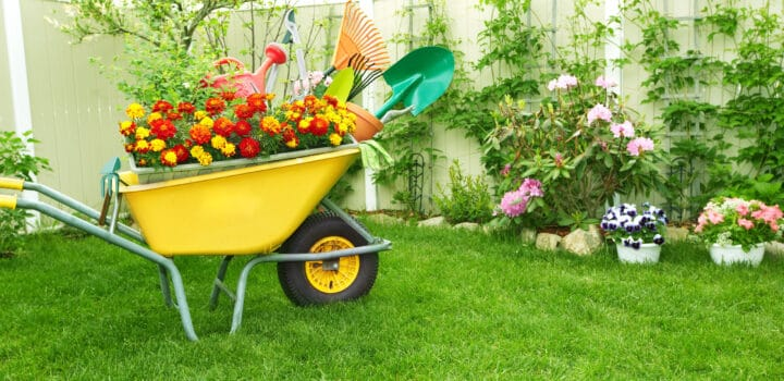 yellow wheelbarrow filled with flowers and yard tools on green grass in the spring